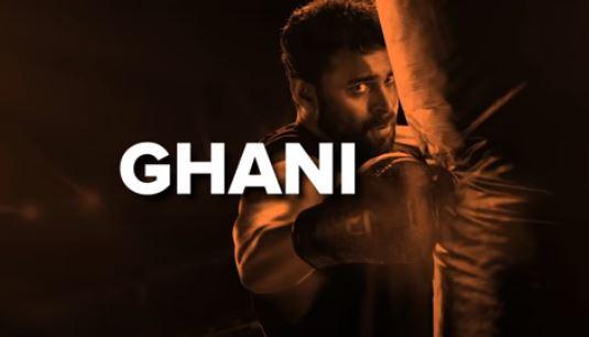 Ghani Movie OTT Release Date